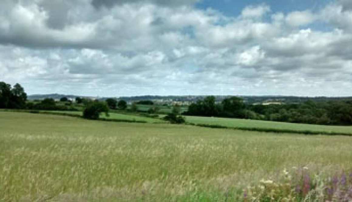 romsley penny fields walk view2