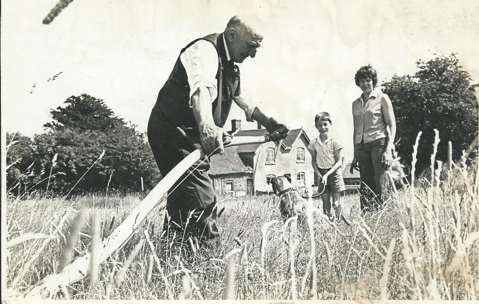 A former Parish Councillor and Verger at The Church, Len Bevan, using a scythe to cut the grass on Romsley Hill Common, no Strimmers in those days and not a lengths-man in sight watched by Gill Lowe and young son Philip in 1977. Submitted by John Lowe
