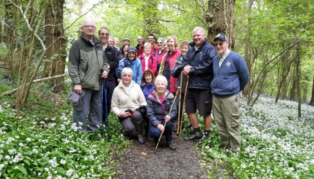 Garlic walk May 2017